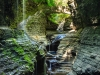 Watkins Glen Trail_0019