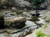 Watkins Glen Trail_0038