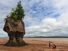 Hopewell Rocks_0038