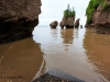 Hopewell Rocks_0210